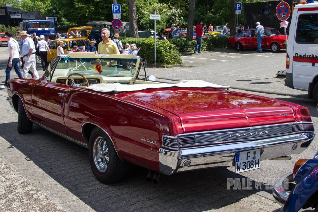 1965 Pontiac GTO Convertible (rear view)