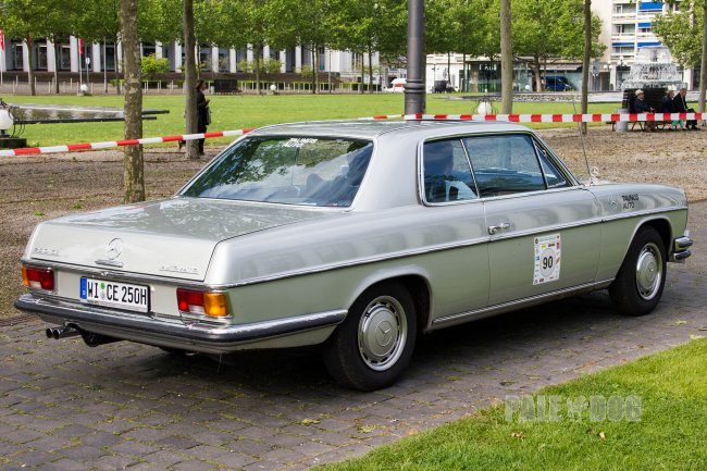 1972 Mercedes-Benz 250 CE (rear view)