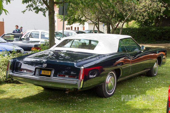 cadillac eldorado convertible rear view  paledog photo collection