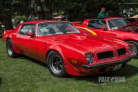 1975 Pontiac Firebird Trans Am (front view)